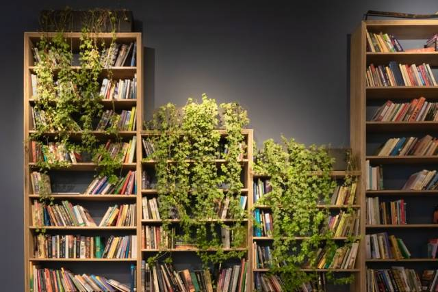 Một số mẫu kệ sách văn phòng đẹp từ nhiều chất liệu khác nhau