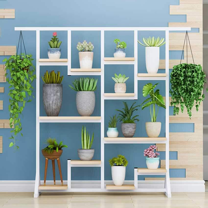 Những mẫu kệ trang trí cây đẹp cho không gian nhà xanh